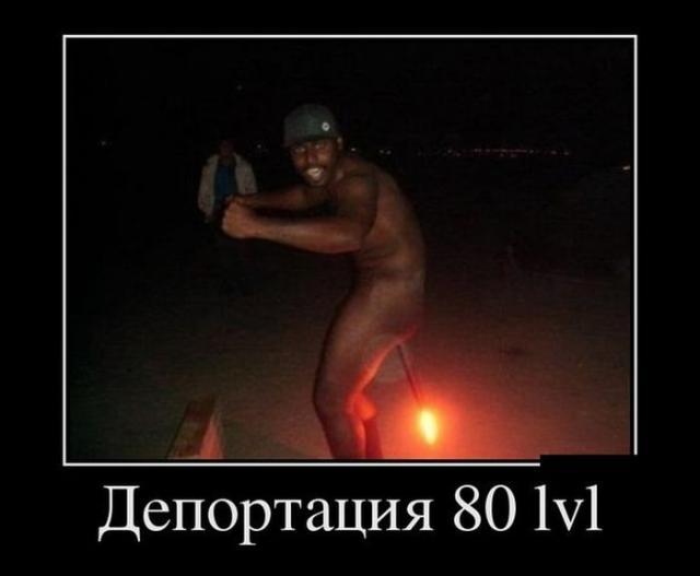������������ - 85
