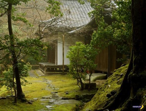 Коинзан Сайходжи - храм мхов