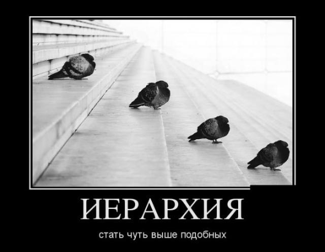Демотиваторы - 88