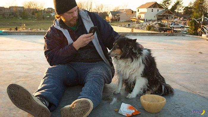 Трогательное спасение пса