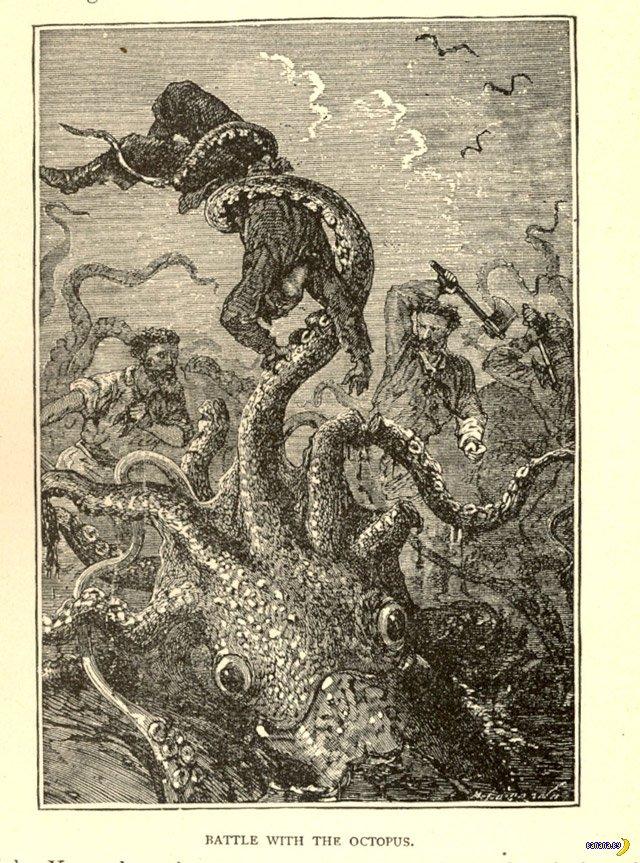 Море и суша Бюела