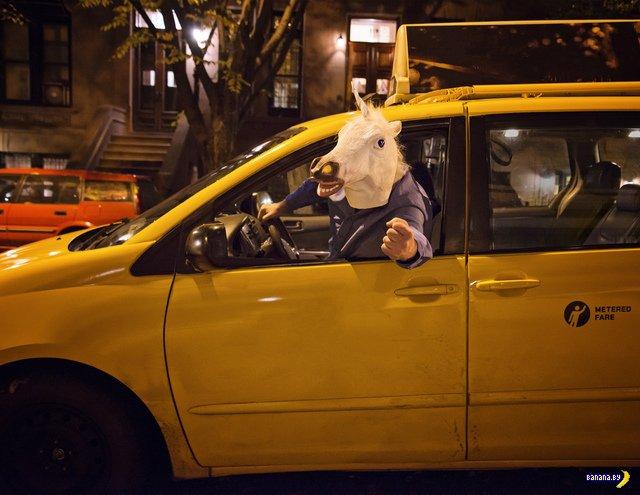 Сексуальный календарь от нью-йоркских таксистов