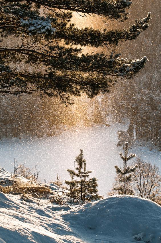 Россыпь красивых фотографий - 11
