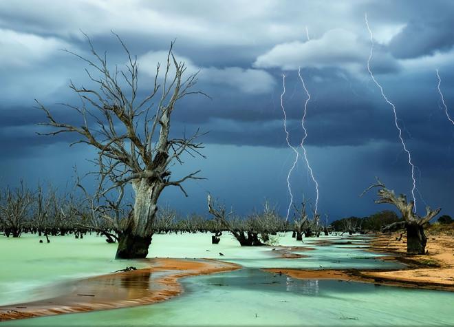 Лучшие фотографии с конкурса National Geographic 2013