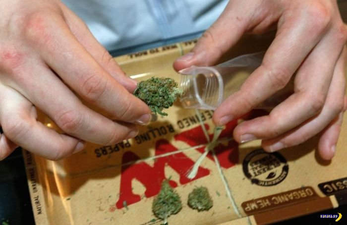 В Колорадо легализовали