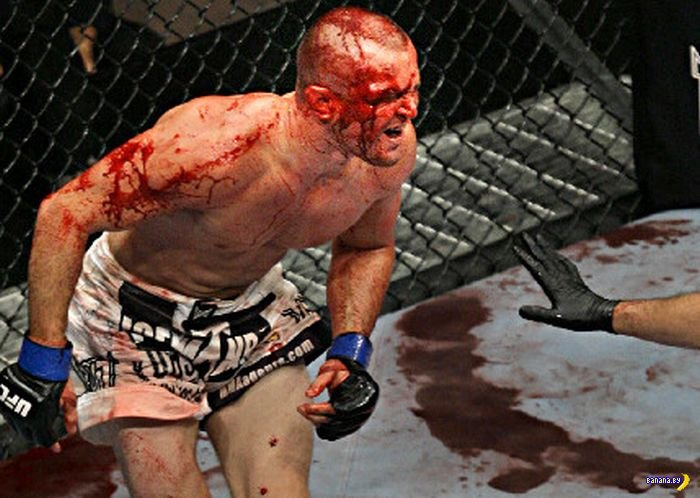 MMA в лицах