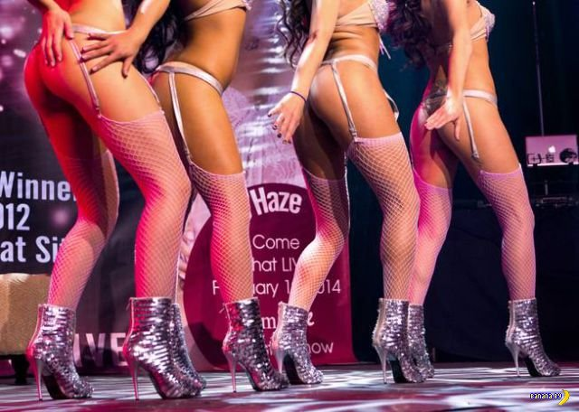 Экскурсия по Adult Entertainment Expo