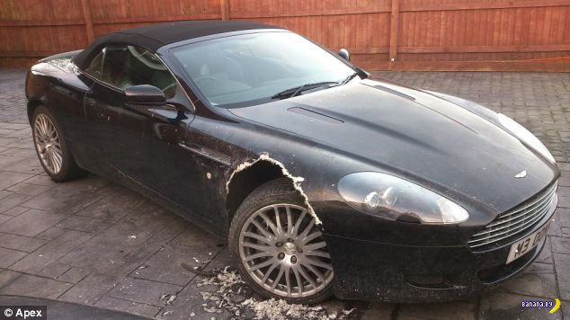 Пес, Aston Martin и слёзы