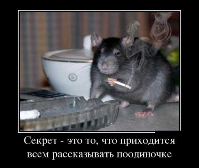 Демотиваторы - 146