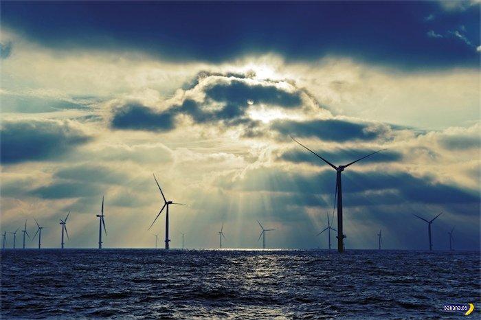 Фото дня - крупнейшая в мире морская ферма ветряков