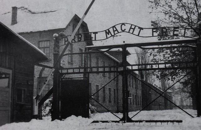 Тролли, Бельгия и Холокост