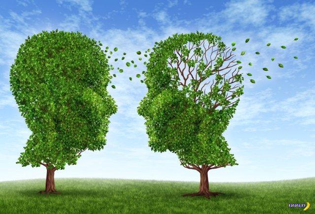 Грозит ли вам Альцгеймер?
