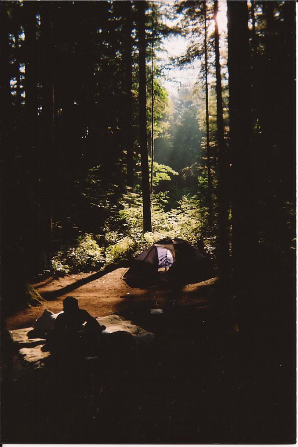 Россыпь красивых фотографий - 19