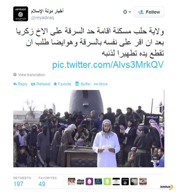 Сирия, рука и прямой репортаж в твиттер