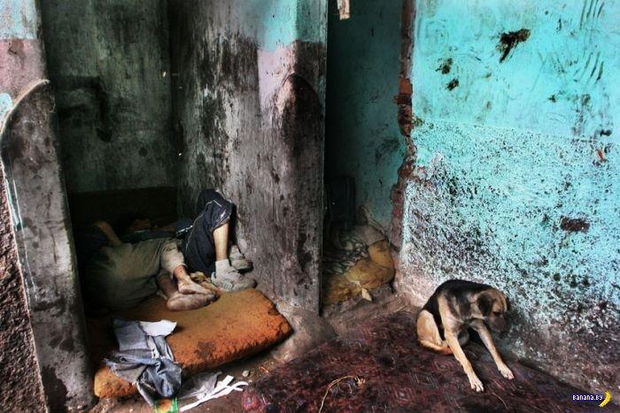 Жертвы Пако