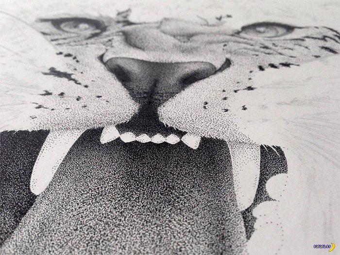 Рисует Ксавьер Касалта