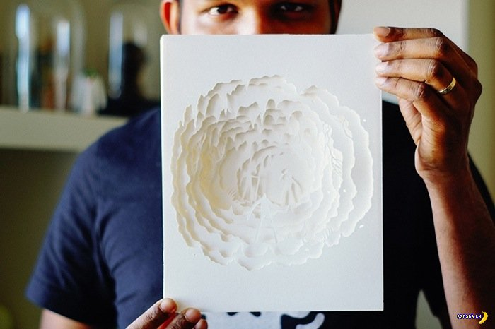 Рисунки светом через бумажки