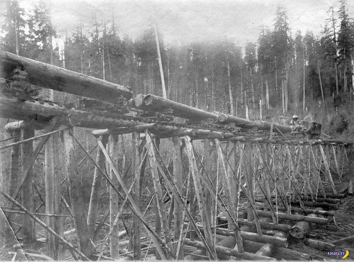 Мосты из бревен в США
