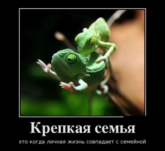 Демотиваторы - 179