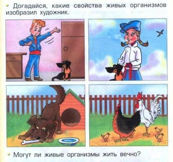 Странности и загадки школьных учебников