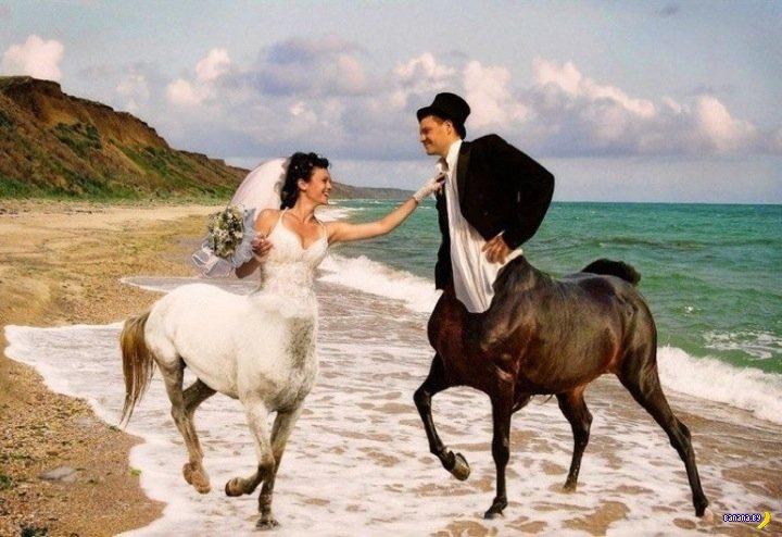 Свадебные кошмары - 8