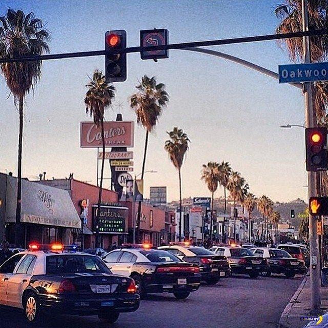 Толпа подростков в Лос Анджелесе