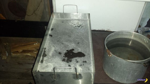Как делается кленовый сироп в домашних условиях?