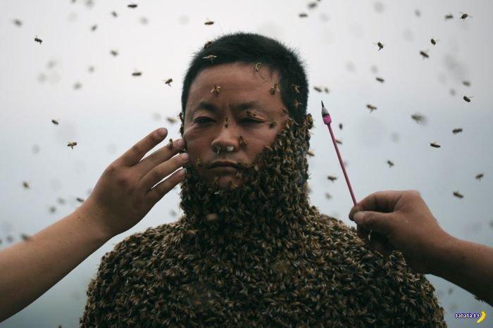 460,000 пчел и 1 китаец