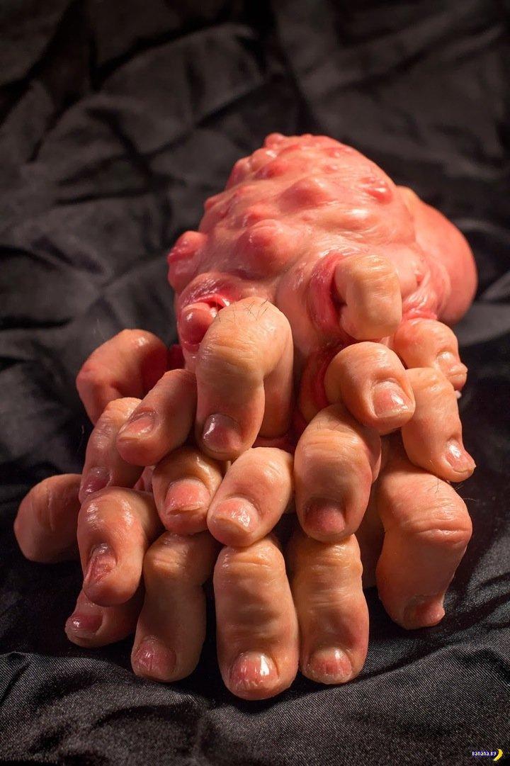Анатомические этюды