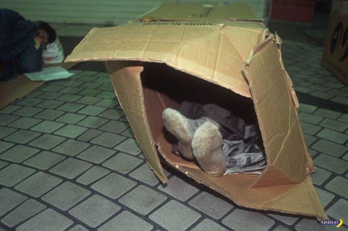 Жители картонных особняков