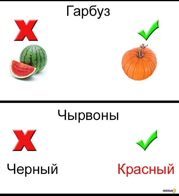 Удивительная мова