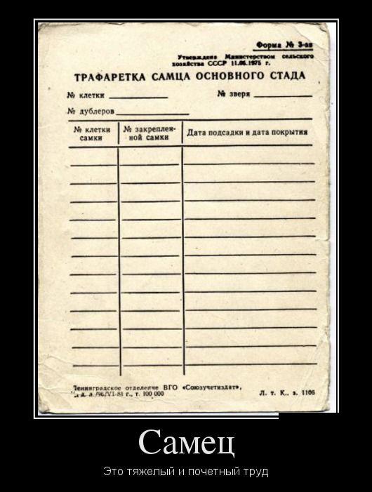 Демотиваторы - 205
