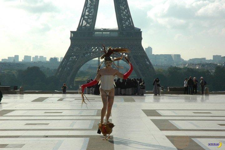 Петухи в Париже