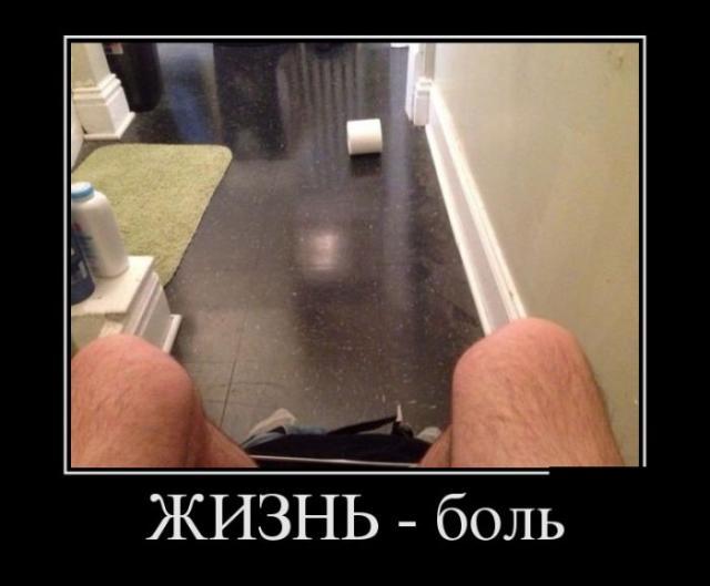 Демотиваторы - 206