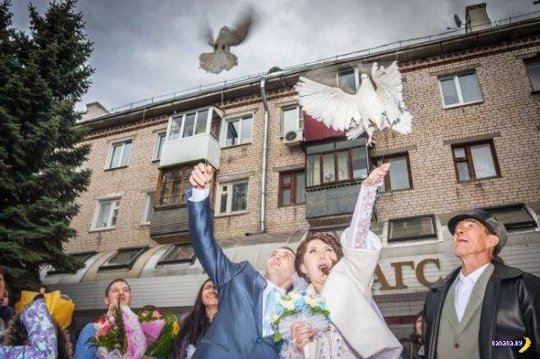 Свадебные кошмары - 9