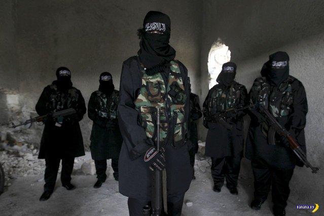 Сирийские повстанки