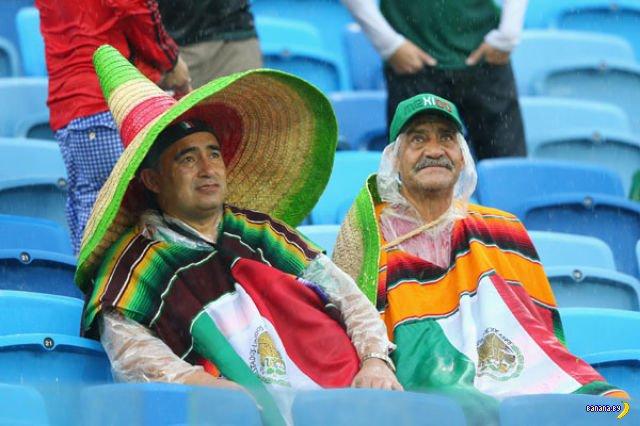 Забавные болельщики с Чемпионата Мира