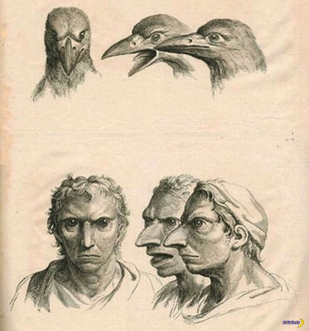 Странные рисунки Шарля Ле Бруна