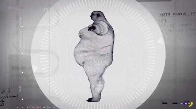 445 кг живого веса