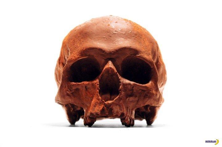 Сели дети, съели череп
