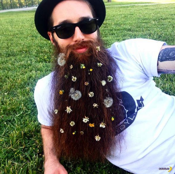 Цветы в твоей бороде