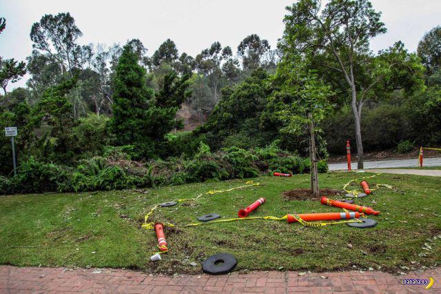 Кладоискатели разгромили парк