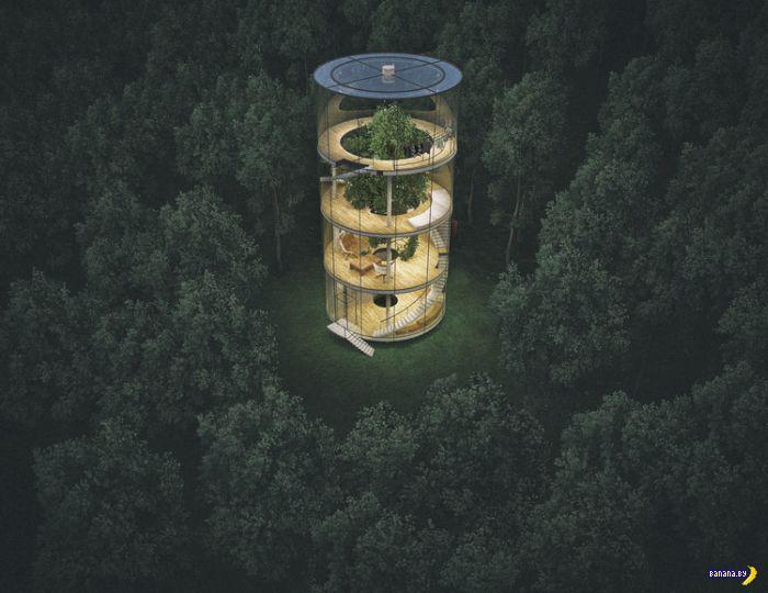 Дом вокруг дерева