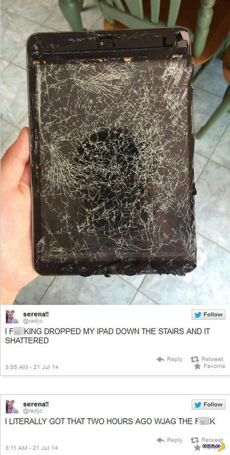 iPad живет полчаса