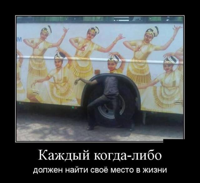 Демотиваторы - 258