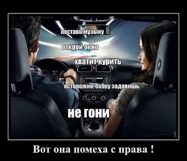 Демотиваторы - 260