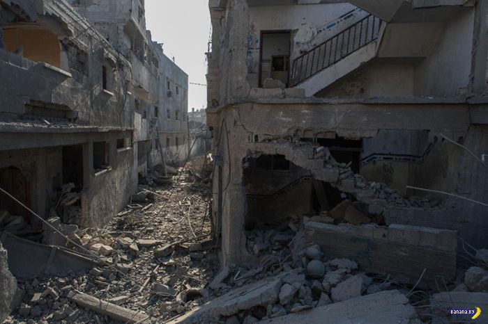Ужасы конфликта в Секторе Газа