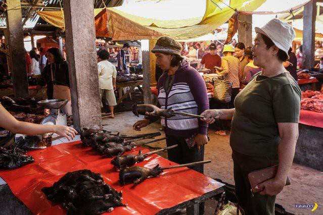 Рынок деликатесов на Сулавеси