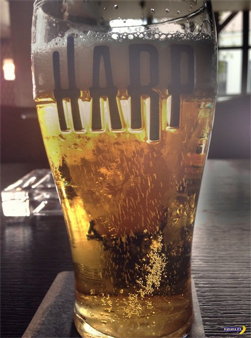 По пивку: налёт на паб Malt & Hops