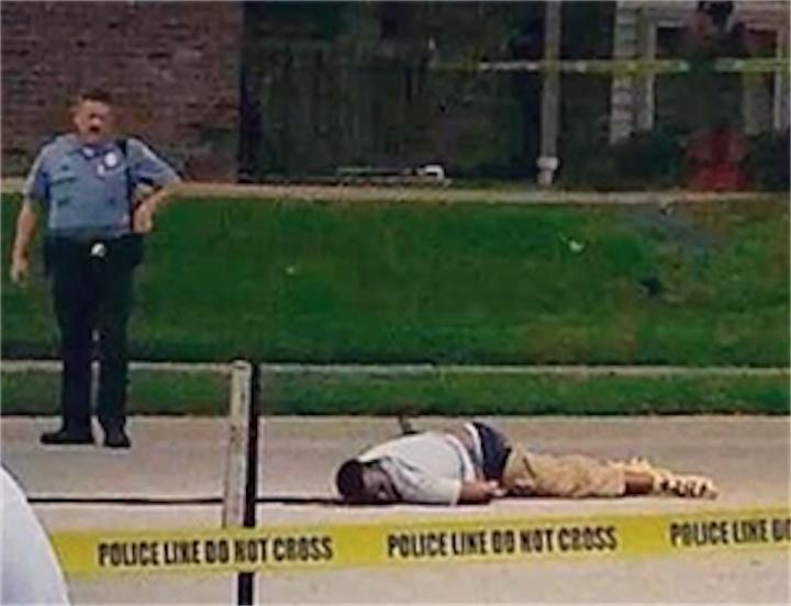 Фергюсон: Браун пытался отобрать пистолет у копа